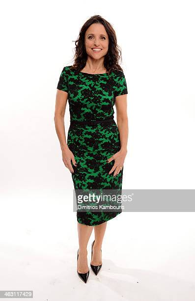 Actress Julia Louis-Dreyfus poses for a portrait during the 19th Annual Critics' Choice Movie Awards at Barker Hangar on January 16, 2014 in Santa...