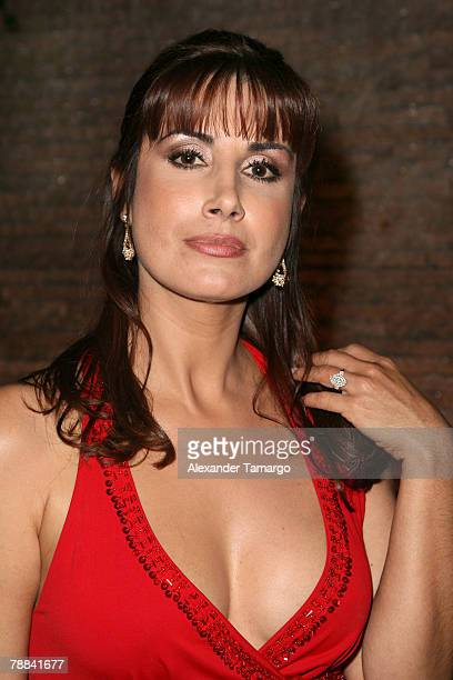 Actress Julieta Rosen poses during Univision's new soap opera Amas de Casa Desesperadas launch party at Karu and Y January 8 2008 in Miami Florida
