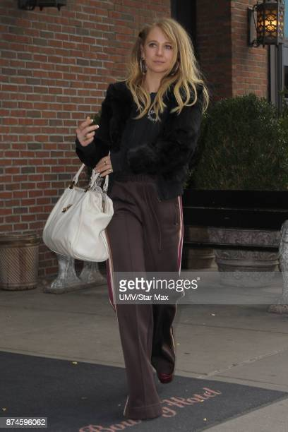 Actress Juno Temple is seen on November 15 2017 in New York City