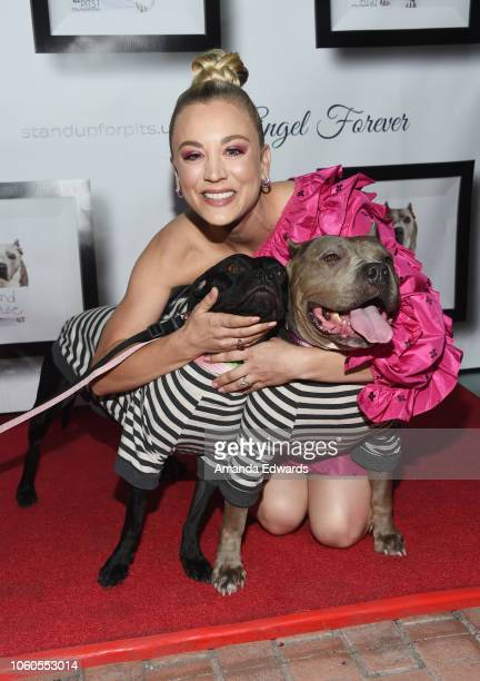 Actress Kaley Cuoco arrives at the 8th Annual Stand Up For Pits at the Hollywood Improv Comedy Club on November 11 2018 in Los Angeles California