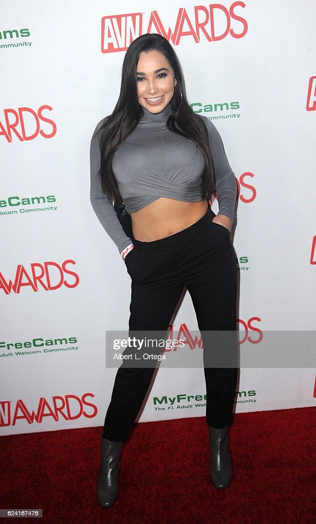 2017 AVN Awards Nomination Party : News Photo
