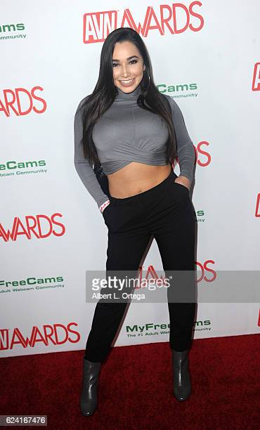 Actress Karlee Grey arrives for the 2017 AVN Awards Nomination Party held at Avalon on November 17, 2016 in Hollywood, California.