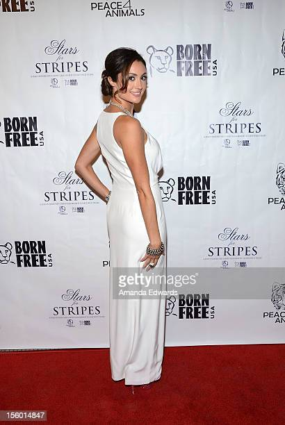 Actress Katie Cleary arrives at the Stars for Stripes benefit to benefit Peace 4 Animals and Born Free on November 10 2012 in Hollywood California