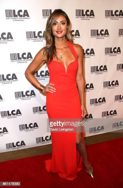 Actress Katie Cleary attends Last Chance for Animals 33rd Annual Celebrity Benefit Gala at The Beverly Hilton Hotel on October 14 2017 in Beverly...