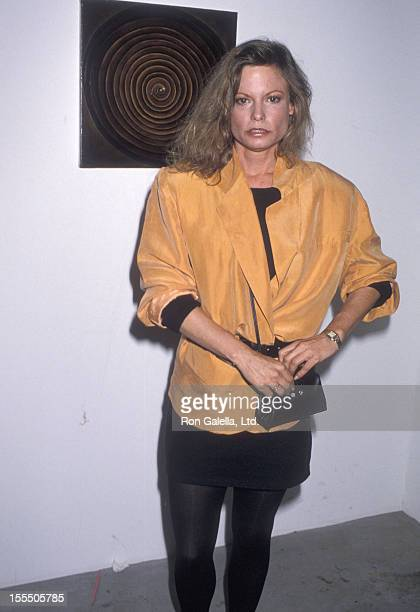 Actress Kay Lenz attends the Angel Art Auction of Fine Art and Photography to Benefit Project Angel Food on May 20 1990 at Ace Gallery in Los Angeles...