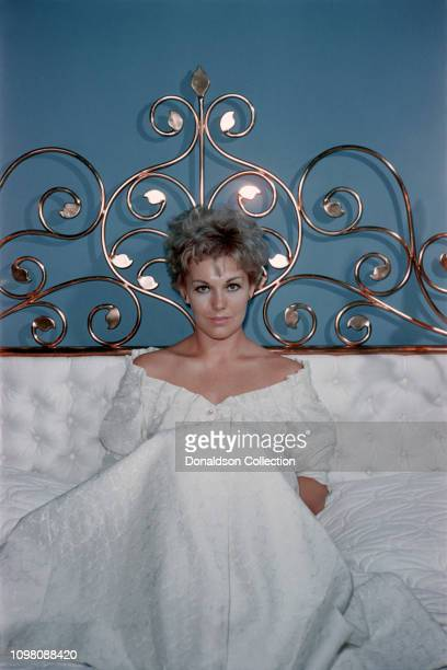 Actress Kim Novak poses for a portrait at home on November 27, 1958 in Los Angeles, California.