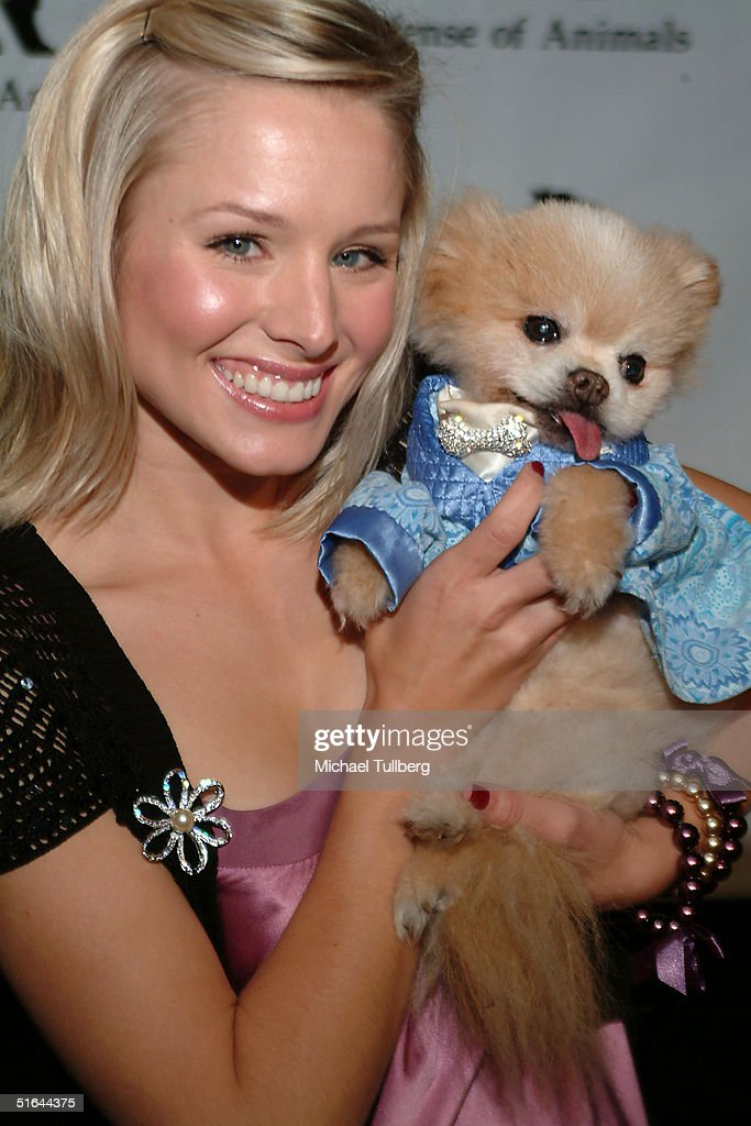 Actress Kristen Bell appears with Mr. Winkle at the 'In Defense Of Animals Guardian Awards Fundraiser' on October 20, 2004 at Paramount Studios in Hollywood, California.