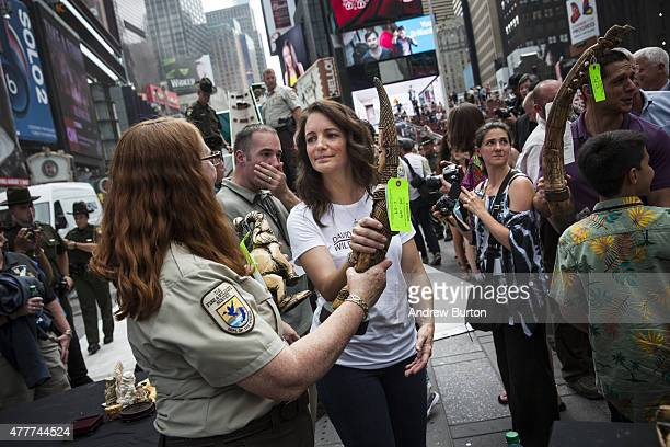 Actress Kristin Davis helps officials from the U.S. Fish and Wildlife Service destroy ivory trinkets confiscated by law enforcement, in Times Square...