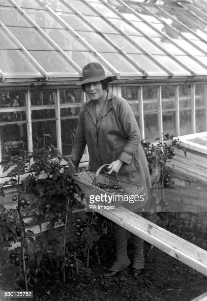 Actress Lady de Bathe formerly Lillie Langtry at work on a farm near Newmarket