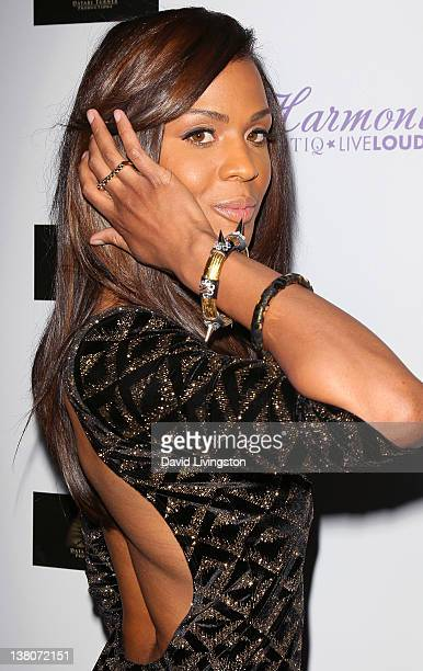 Actress Laila Odom attends the premiere of Dysfunctional Friends at Harmony Gold Theatre on February 1 2012 in Los Angeles California