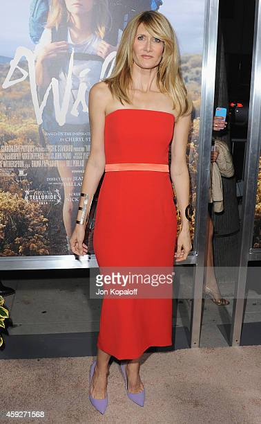 Actress Laura Dern arrives at the Los Angeles Premiere 'Wild' at AMPAS Samuel Goldwyn Theater on November 19 2014 in Beverly Hills California