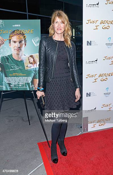 Actress Laura Dern attends a screening of Anchor Bay Entertainment's film 'Just Before I Go' at ArcLight Hollywood on April 20 2015 in Hollywood...