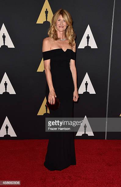 Actress Laura Dern attends the Academy Of Motion Picture Arts And Sciences' 2014 Governors Awards at The Ray Dolby Ballroom at Hollywood Highland...