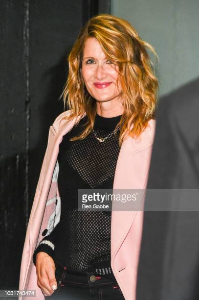Actress Laura Dern attends the Calvin Klein Collection outside arrivals during New York Fashion Week on September 11, 2018 in New York City.
