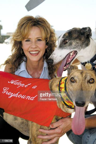 Actress Linda Blair with rescued greyhounds pose on July 24 2002 in Van Nuys California The celebrities and dogs were at the Van Nuys airport as part...