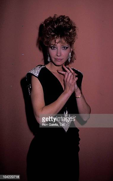 Actress Lisa Eilbacher attends First Annual Stuntman Awards on February 2 1985 at KABC TV Studios in Los Angeles California