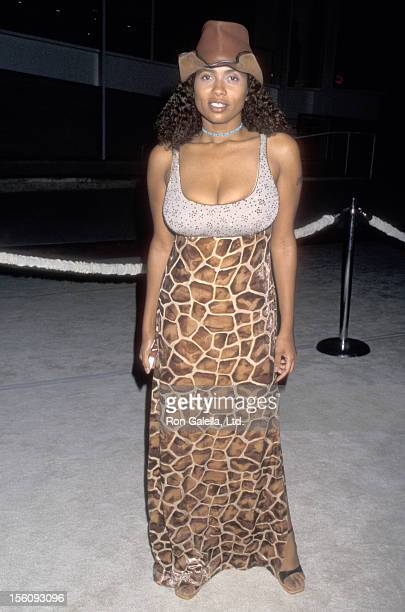 Actress Lisa Nicole Carson attend Museum of Television and Radio Gala to Salute Jerry Seinfeld and David E Kelley on October 4 1998 at The Museum of...