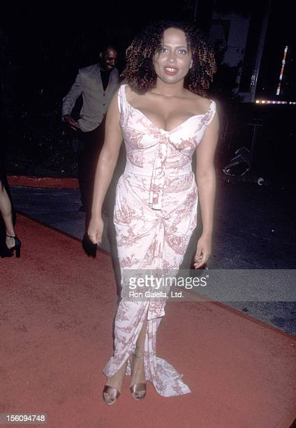 Actress Lisa Nicole Carson attends the 33rd Annual NAACP Image Awards on February 23 2002 at Universal Amphitheatre in Universal City California
