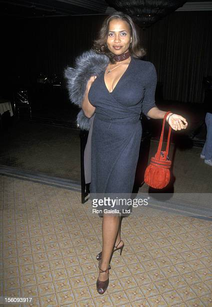 Actress Lisa Nicole Carson attends the Second Annual Tourette Syndrome Association Gala Honoring Cuba Gooding Jr and Maury Povich on February 4 1999...