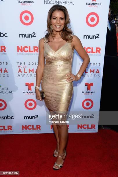 Actress Lisa Vidal attends the 2013 NCLR ALMA Awards at Pasadena Civic Auditorium on September 27 2013 in Pasadena California