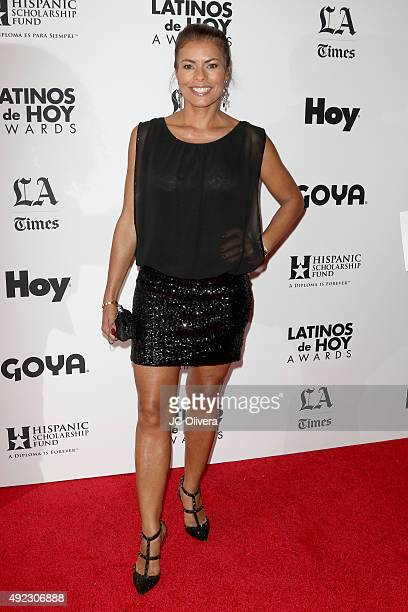 Actress Lisa Vidal attends The Los Angeles Times and Hoy 2015 Latinos de Hoy Awards at Dolby Theatre on October 11 2015 in Hollywood California