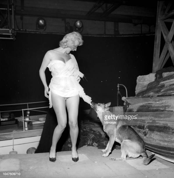 Actress Liz Fraser seen here having a little trouble with one of her co-stars on set at Twickenham Studios were she is making 'Double Bunk'. October...