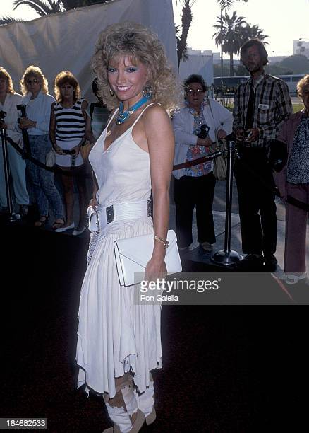 Actress Lois Hamilton attends the 33rd Annual SHARE Boomtown Party on May 17 1986 at the Santa Monica Civic Auditorium in Santa Monica California