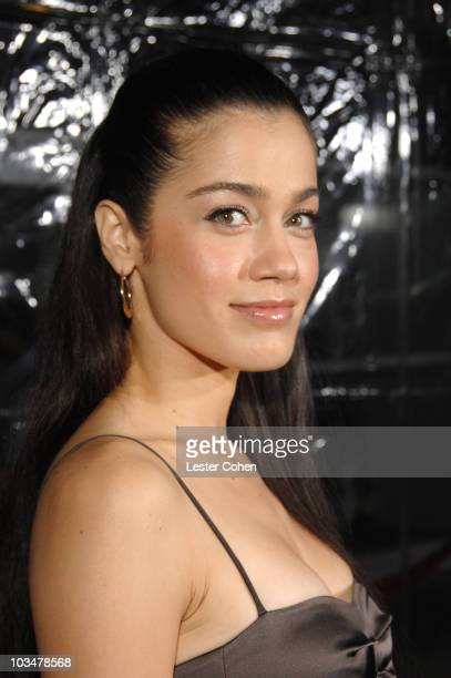 Actress Lymari Nadal arrives to the industry screening of American Gangster at the Arclight on October 29 2007 in Hollywood California