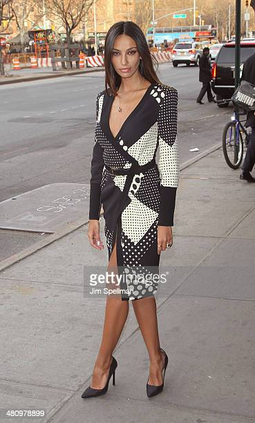 Actress Madalina Diana Ghenea attends the Fox Searchlight Pictures' Dom Hemingway screening hosted by The Cinema Society And Links Of London on March...