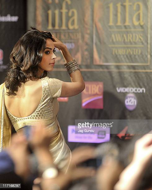 Actress Malika Sherawat at the official launch of the 2011 IIFA press conference held at the Royal York Hotel on June 23 2011 in Toronto Canada