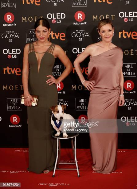 Actress Maria Esteve attends the 32th edition of the Goya Awards ceremony in Madrid Spain on February 04 2018