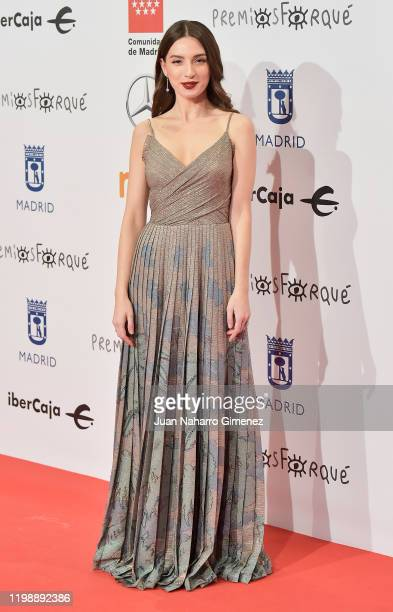Actress Maria Valverde attends the red carpet during 'Jose Maria Forque Awards' 2020 at Ifema on January 11, 2020 in Madrid, Spain.