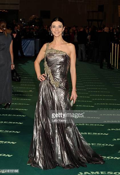 Actress Maribel Verdu attends the Goya 2008 Cinema Awards Ceremony at the Palacio de Congresos on Febraury 3 2008 in Madrid Spain