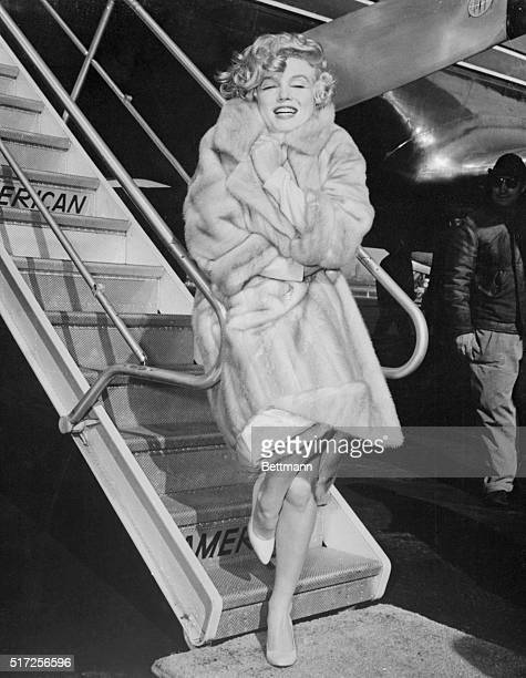 Actress Marilyn Monroe snuggles into her fur coat to escape the icy winds at La Guardia airport here March 18th Marilyn flew to Chicago for the...