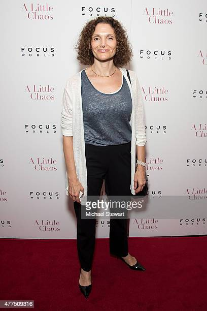 Actress Mary Elizabeth Mastrantonio attends the A Little Chaos New York premiere at Museum of Modern Art on June 17 2015 in New York City