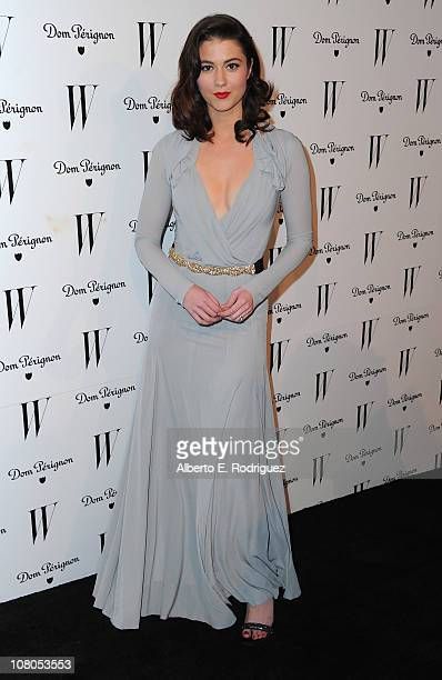 Actress Mary Elizabeth Winstead arrives to the W Magazine Golden Globe Awards party on January 14 2011 in West Hollywood California