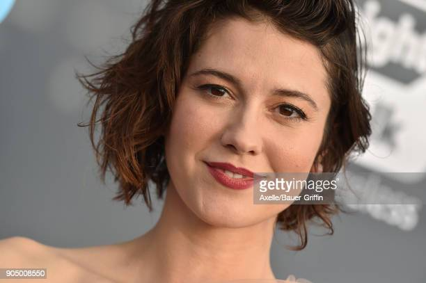 Actress Mary Elizabeth Winstead attends the 23rd Annual Critics' Choice Awards at Barker Hangar on January 11 2018 in Santa Monica California