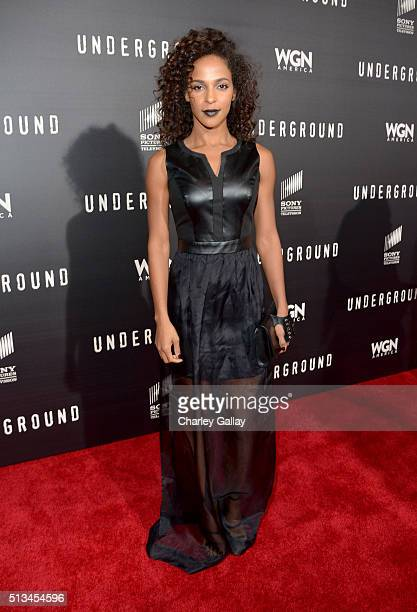 Actress Megalyn Echikunwoke attends WGN America's Underground World Premiere on March 2 2016 in Los Angeles California
