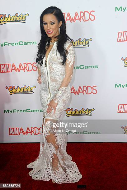 Actress Megan Rain arrives at the 2017 Adult Video News Awards held at the Hard Rock Hotel Casino on January 21 2017 in Las Vegas Nevada