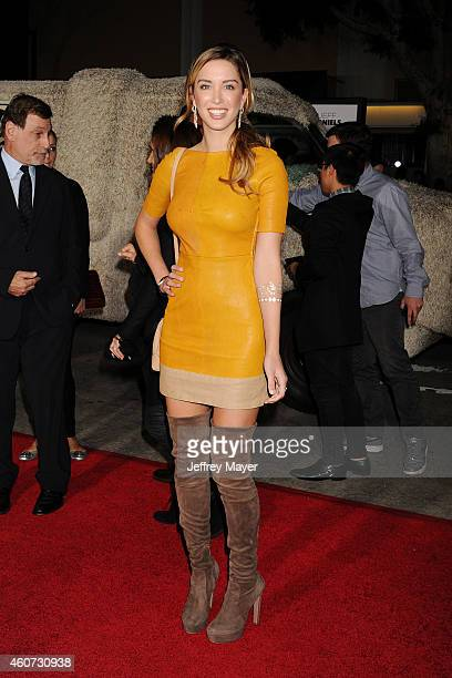 Actress Melissa Bolona arrives at the Los Angeles premiere of 'Dumb And Dumber To' at Regency Village Theatre on November 3 2014 in Westwood...