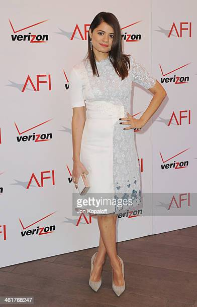 Actress Melonie Diaz arrives at the 14th Annual AFI Awards at Four Seasons Hotel Los Angeles at Beverly Hills on January 10 2014 in Beverly Hills...