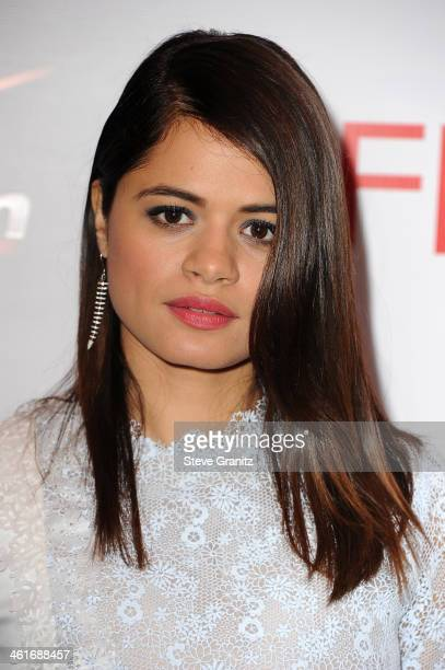 Actress Melonie Diaz attends the 14th annual AFI Awards Luncheon at the Four Seasons Hotel Beverly Hills on January 10 2014 in Beverly Hills...