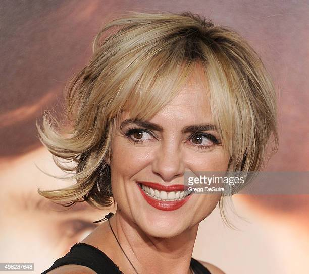 Actress Michelle Johnson arrives at the premiere of Focus Features' The Danish Girl at Westwood Village Theatre on November 21 2015 in Westwood...