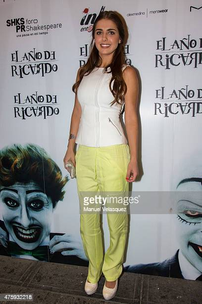 Actress Michelle Renaud poses during a red carpet prior the presentation of the play The Year of Ricardo at Foro Shakespeare on June 06 2015 in...
