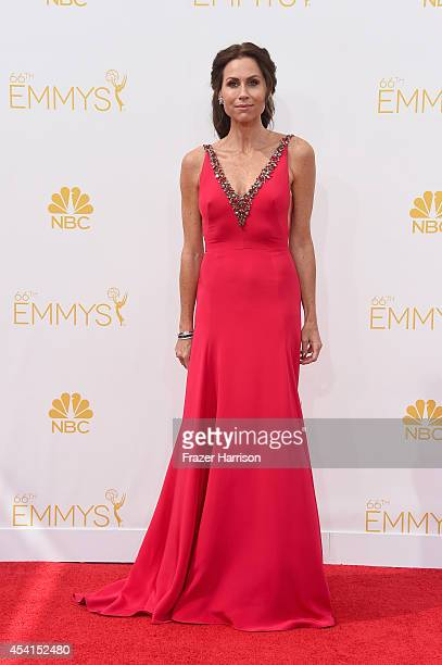 Actress Minnie Driver attends the 66th Annual Primetime Emmy Awards held at Nokia Theatre L.A. Live on August 25, 2014 in Los Angeles, California.