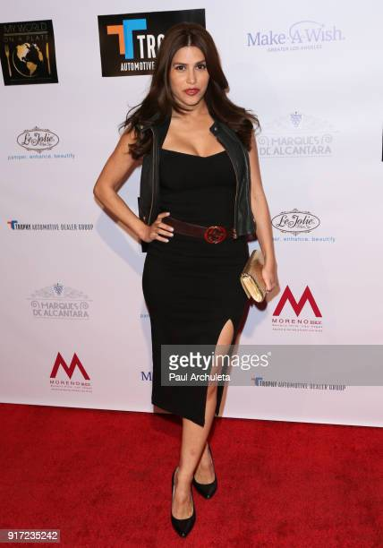 Actress / Model Rachel Sterling attends the trophy celebration benefiting the MakeAWish Foundation on February 11 2018 in Los Angeles California