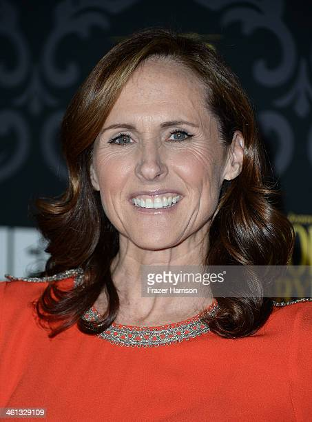 Actress Molly Shannon attends the screening of IFC's The Spoils Of Babylon at DGA Theater on January 7 2014 in Los Angeles California
