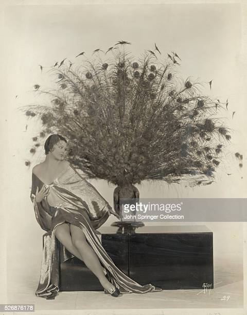 Actress Myrna Loy by Mounted Peacock