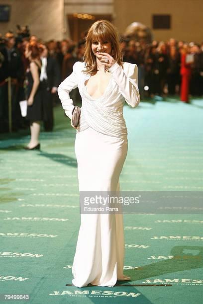 Actress Najwa Nimri attends the Goya 2008 Cinema Awards Ceremony at the Palacio de Congresos on Febraury 3 2008 in Madrid Spain