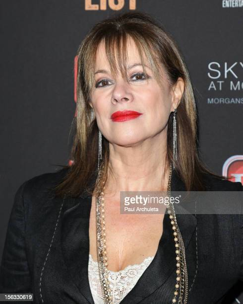 Actress Nancy Lee Grahn attends the TV Guide Magazine Hot List Party at SkyBar at the Mondrian Los Angeles on November 12, 2012 in West Hollywood,...